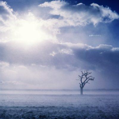 .rozhovor s Bohom <br><br>Do takého počasia ani psa nevyhnať. Keby nebol v ten deň workshop asi by som ani nevyliezol z postele. A oplatilo sa. Silný vietor, poletujúci sneh a slniečko vytvorili krásnu atmosféru pre fotku. <br> PENTACON SIX, BIOMETAR 80mm f/2,8, FUJICHROPE VELVIA 50 RVP